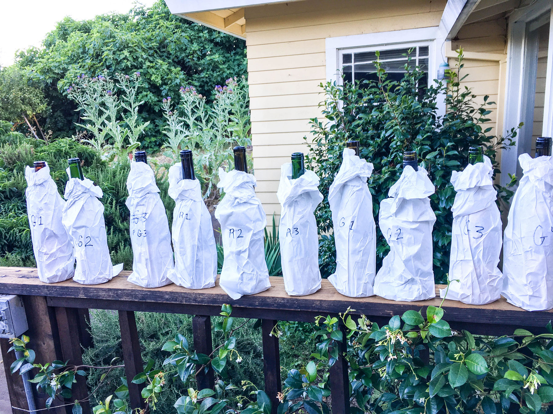 a line of paper-bagged wine bottles lined up on a fence