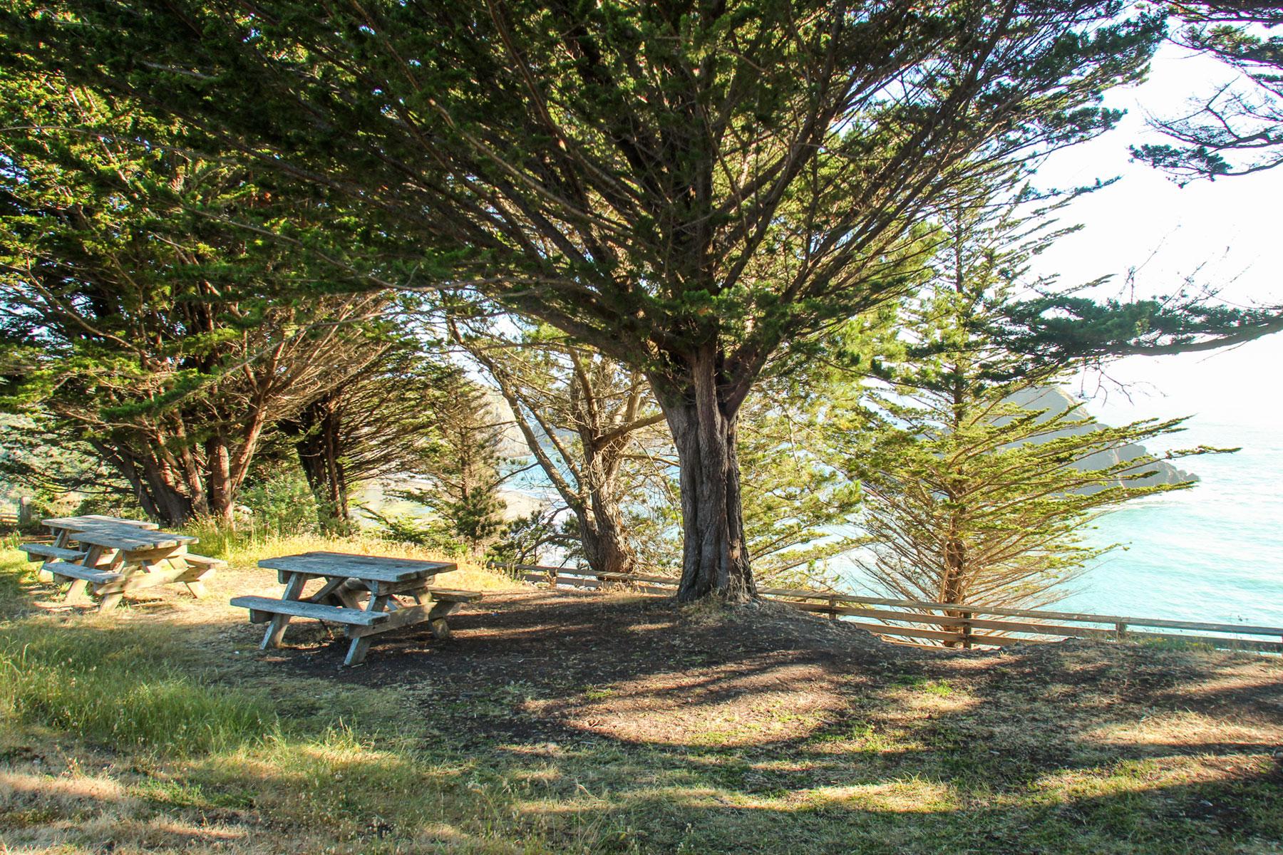 Greenwood State Beach, Elk