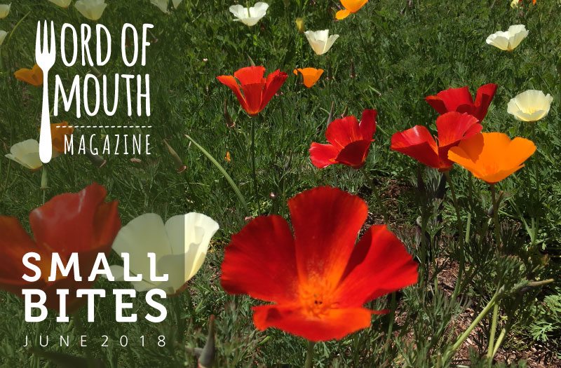 June 2018 Small Bites for Word of Mouth magazine