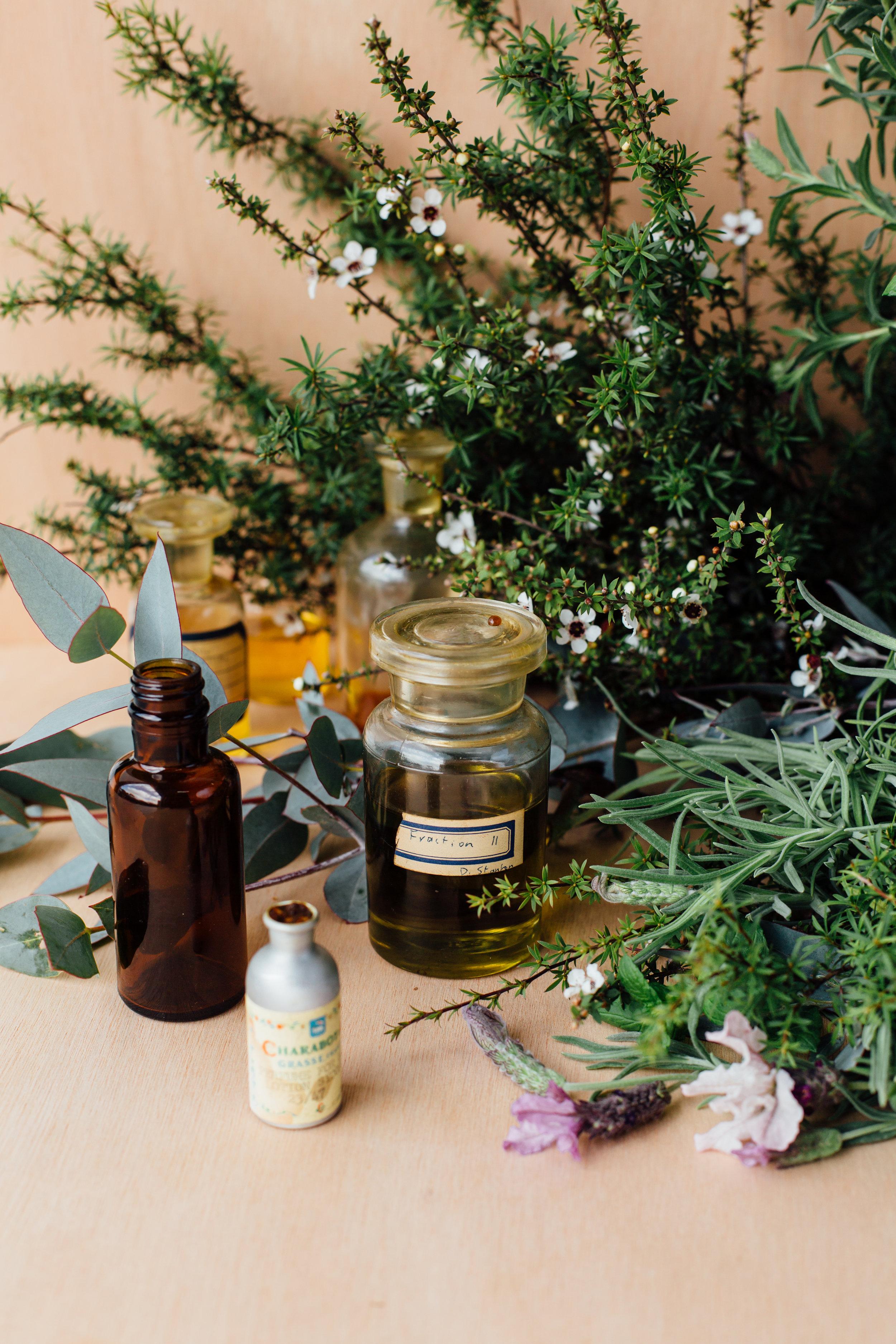 Fragrance Creation