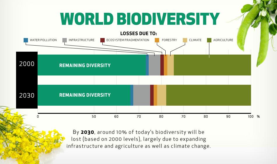 world-biodiversity.jpg