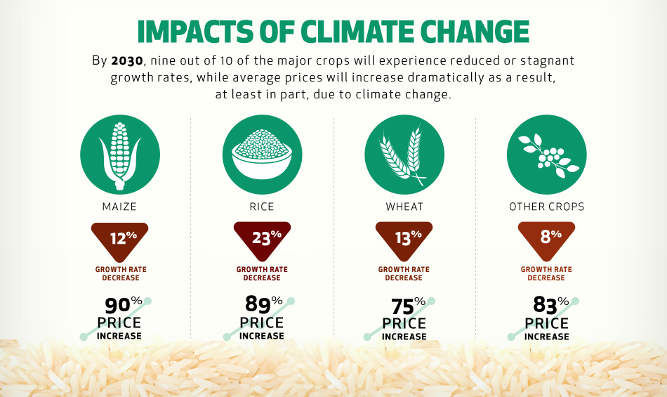impacts-of-climate-change.jpg