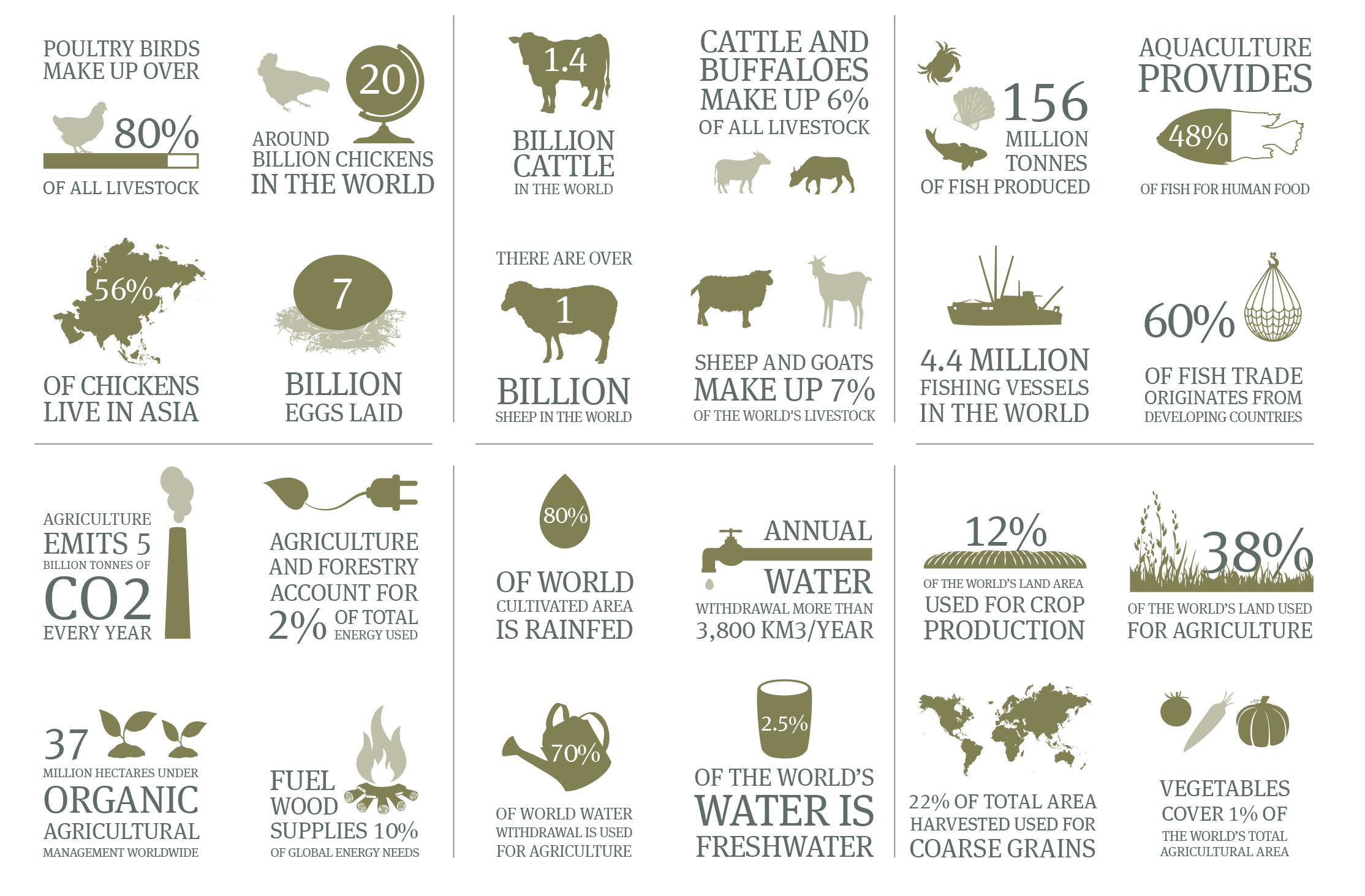 food--agribusiness-in-numbers_1-113013.jpg