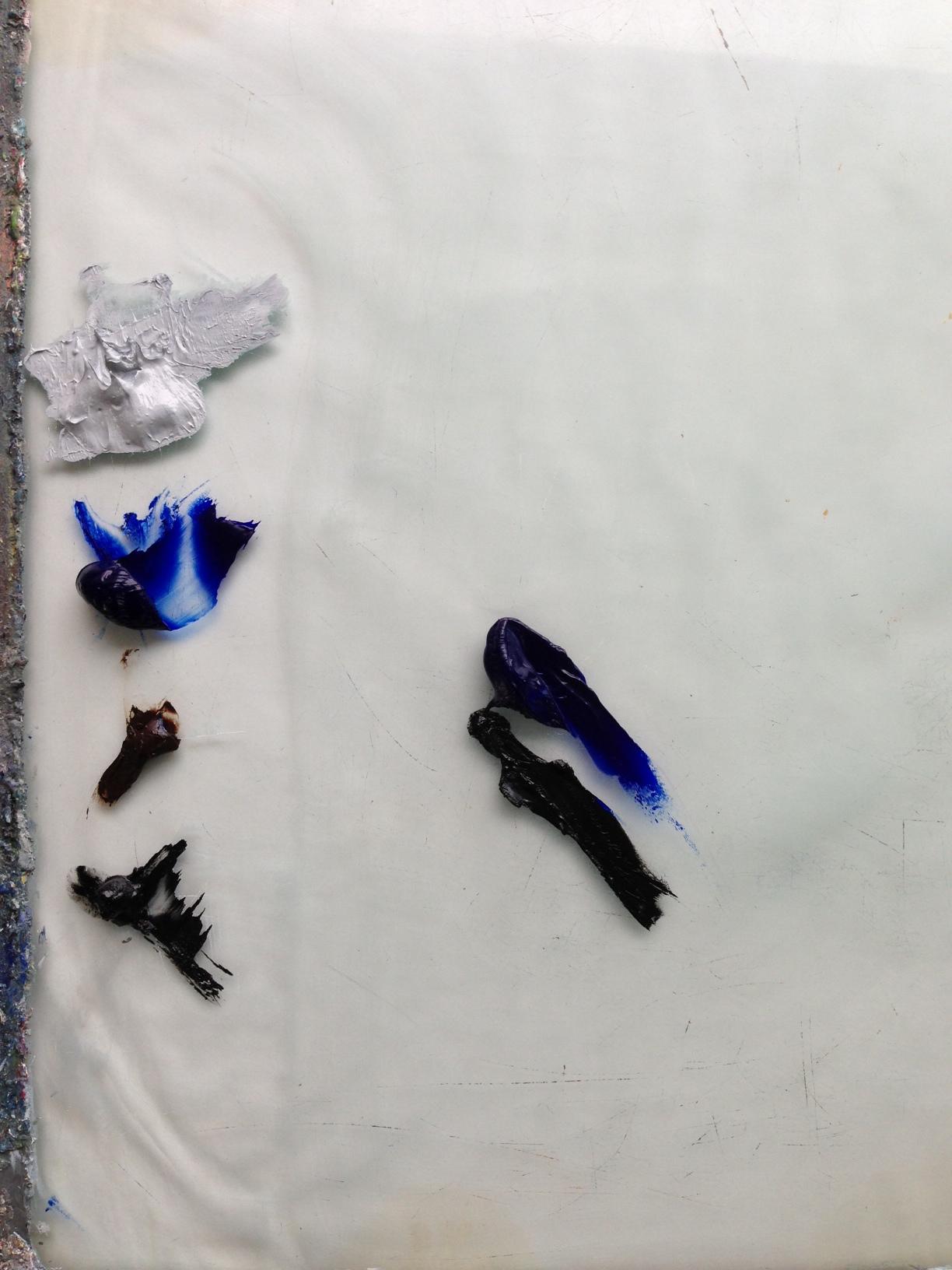 1.evolve.palette.2013.JPG
