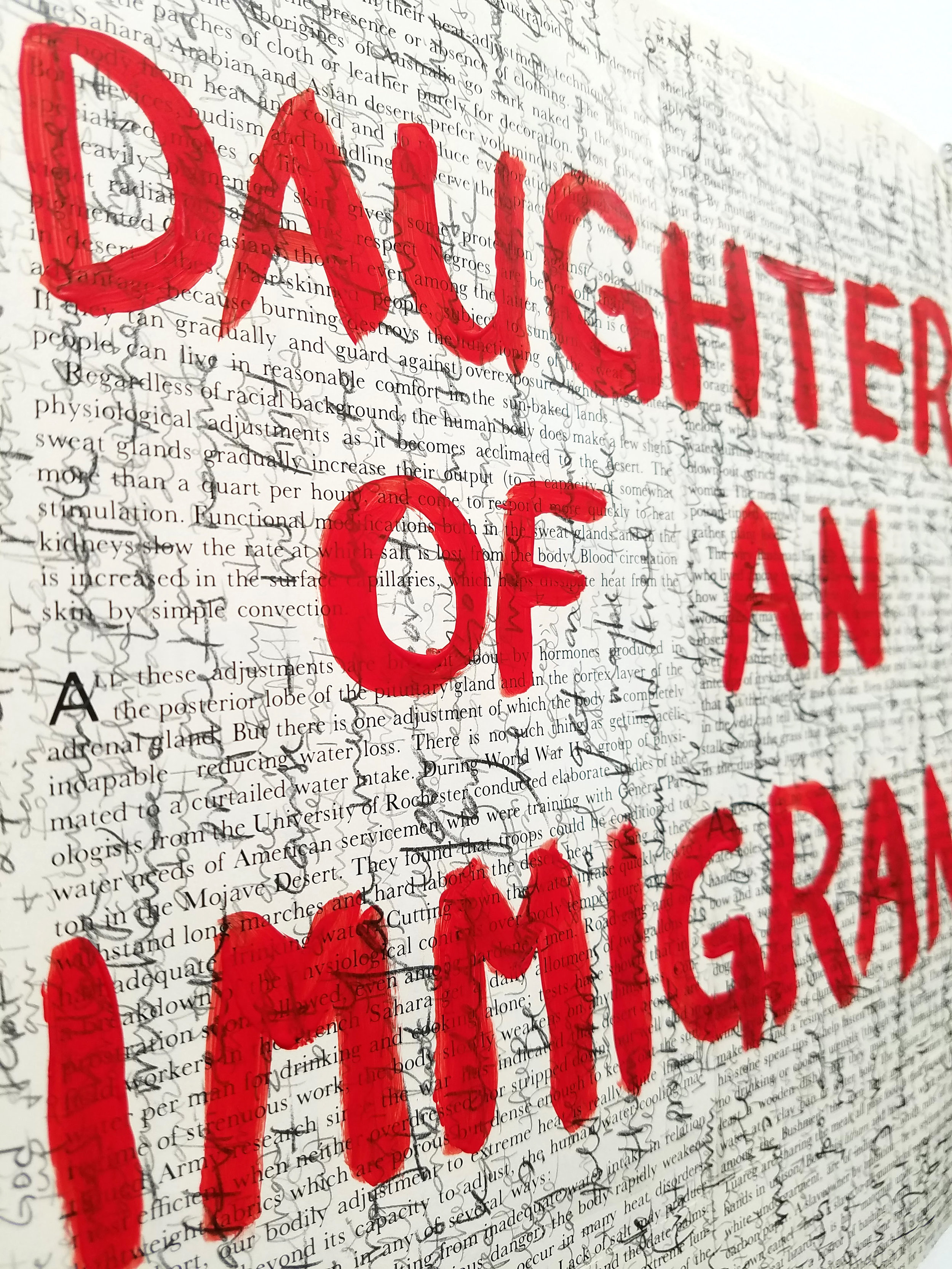 daughter of an immigrant_4.jpg