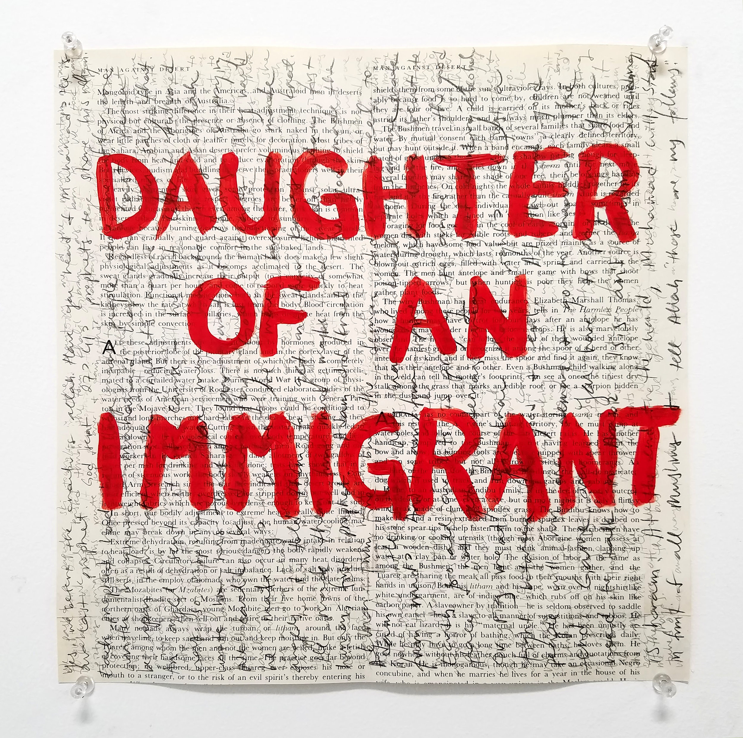 aneesa_shami_daughter_of_an_immigrant