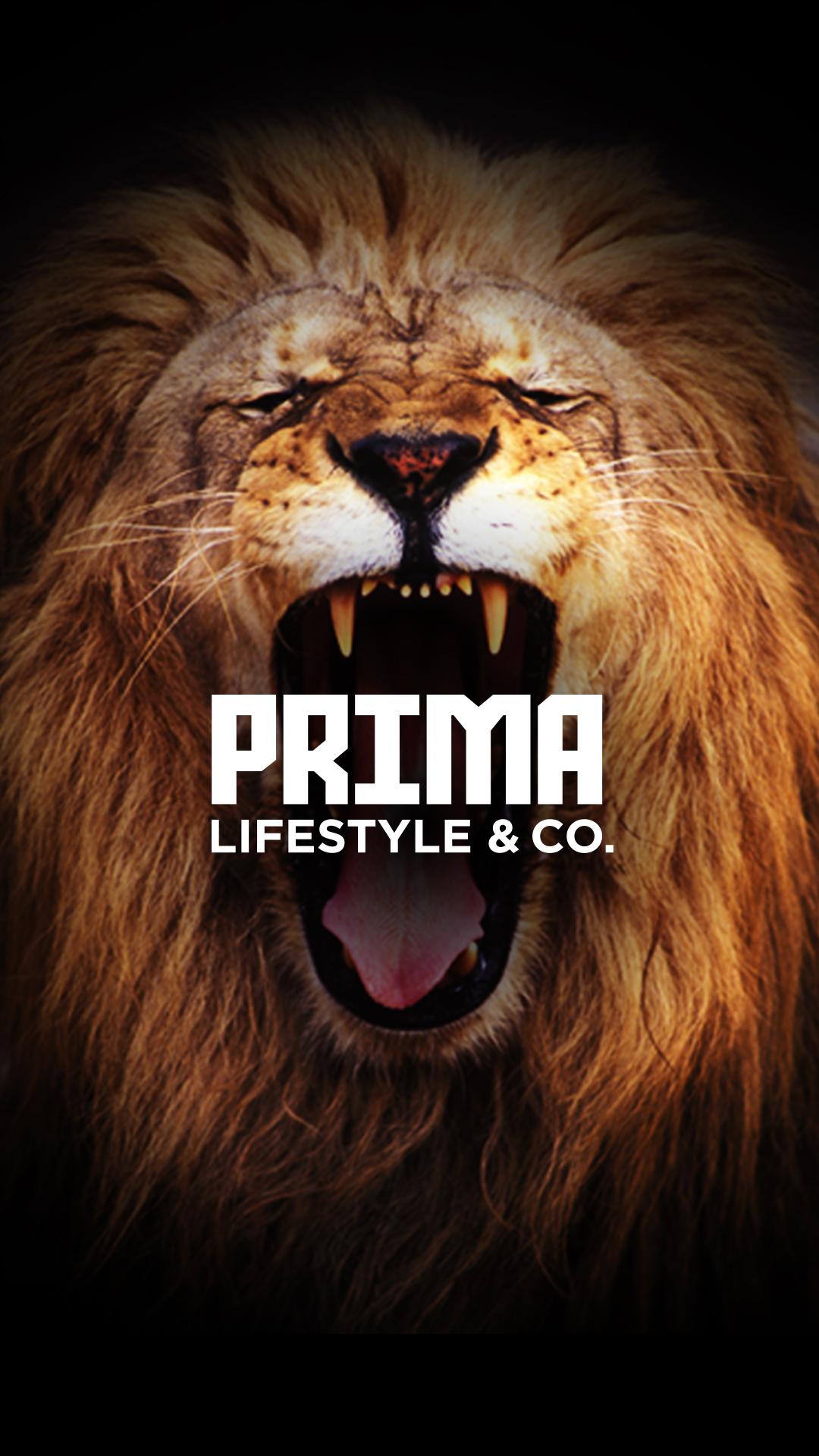 PRIMA_Lifestyle_bg1.jpg