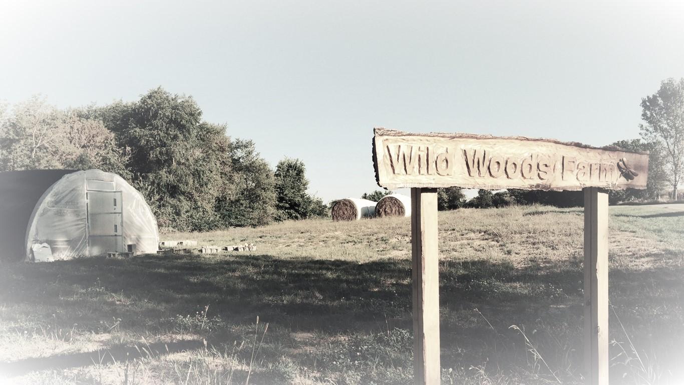 wild woods farm.JPG