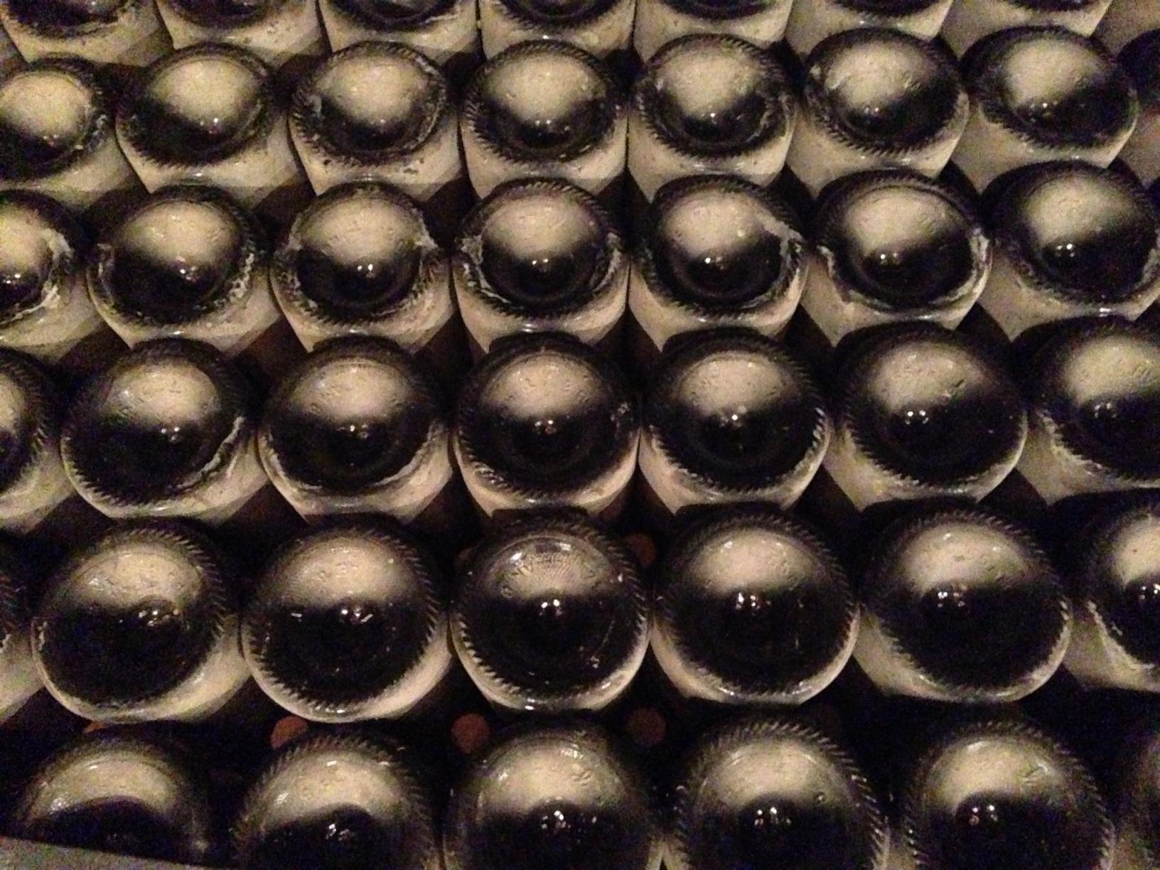 bottleshot.jpg