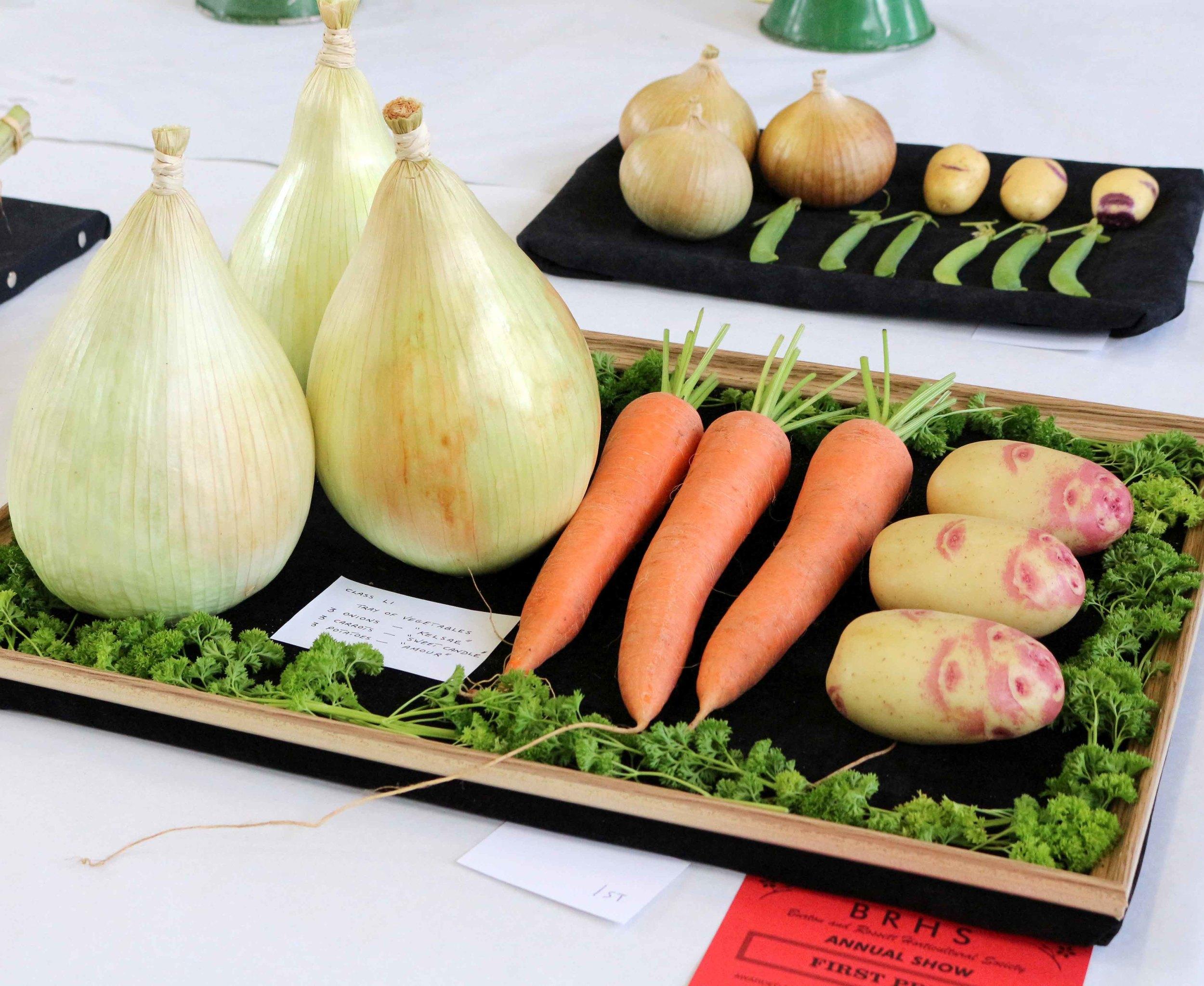 Vegetables 1.jpg