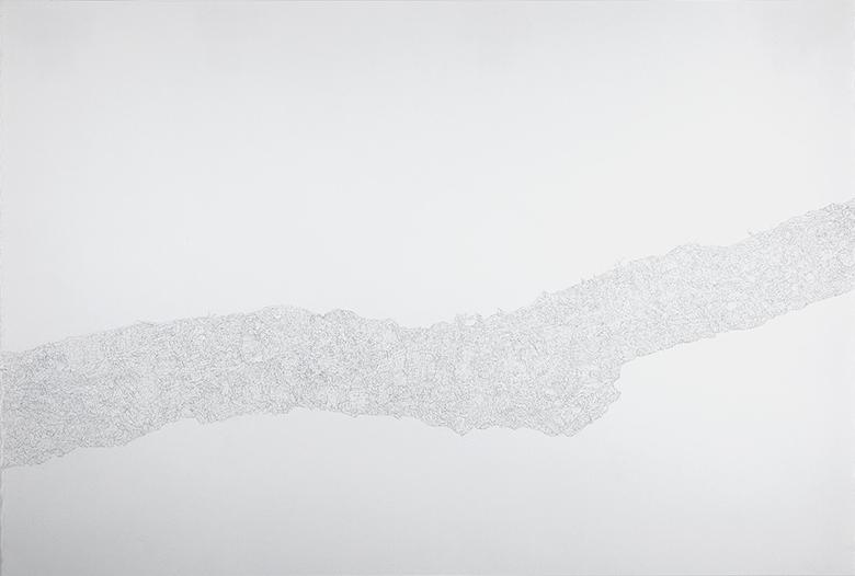 Limb  , 2015   Graphite on Paper   15 x 22.5in.