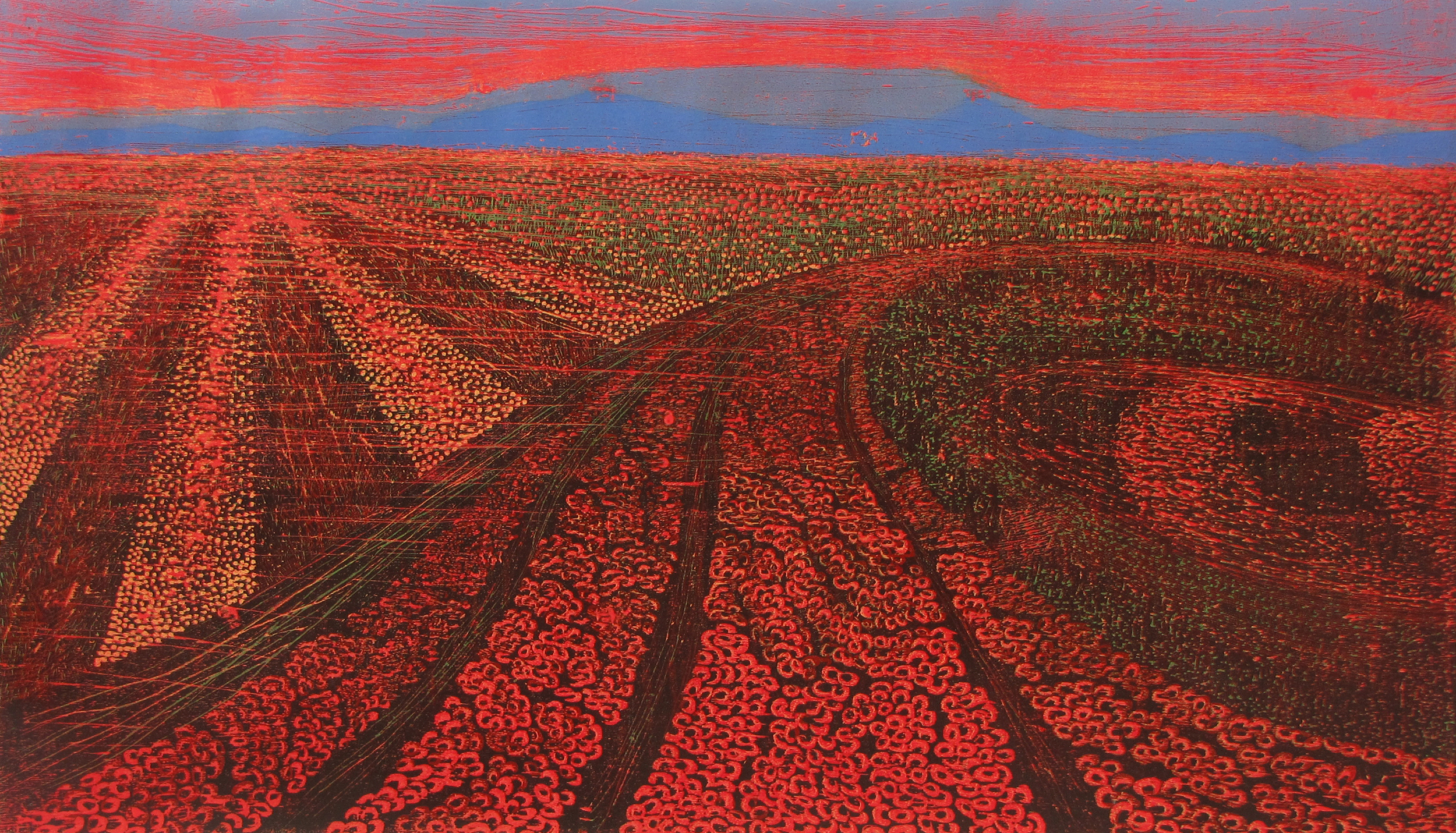 Silent Fields - 4,   2014   Woodcut, edition of 3   27 x 46 in.