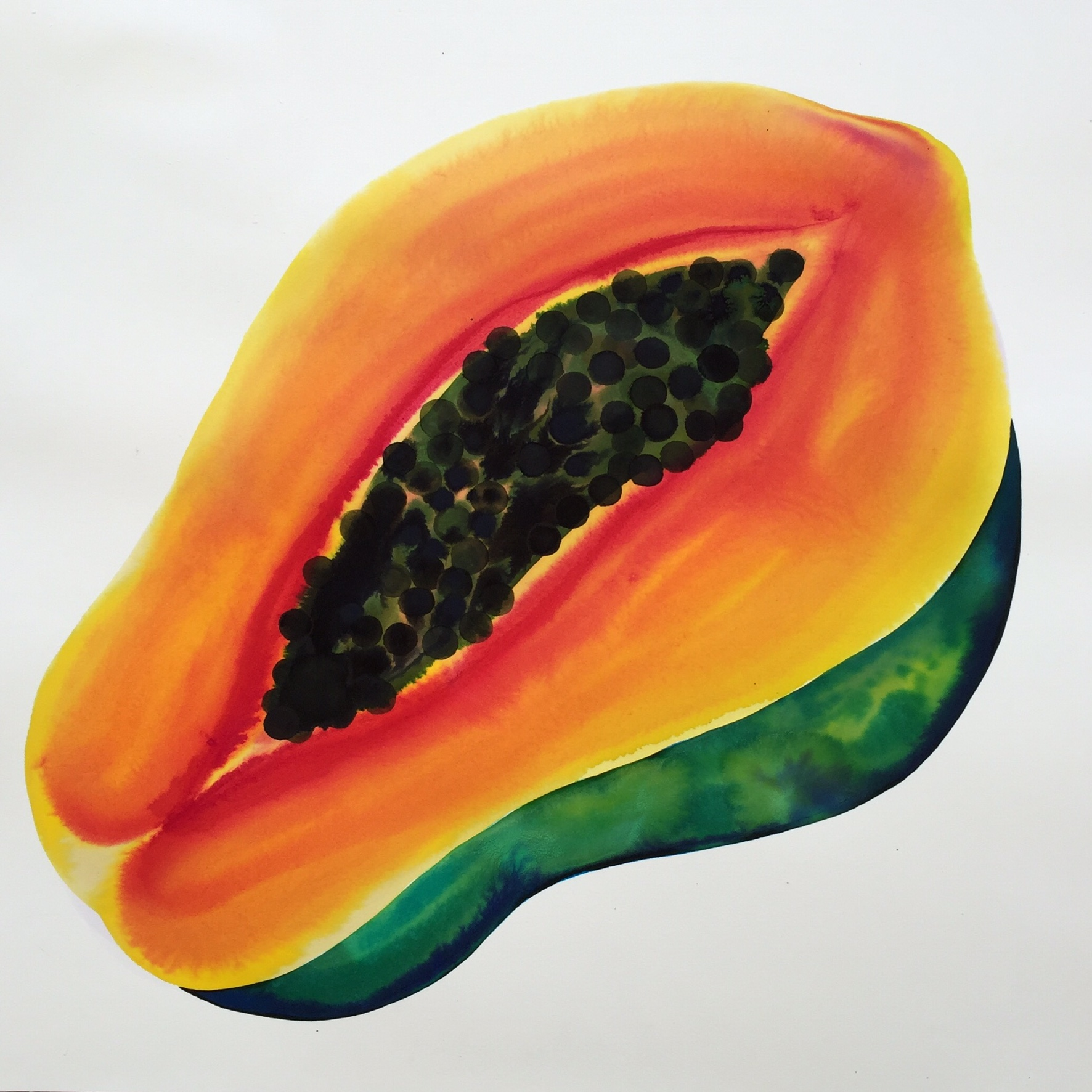 """papaya, 2018, 19"""" x 19"""" watercolor on arches SOLD"""