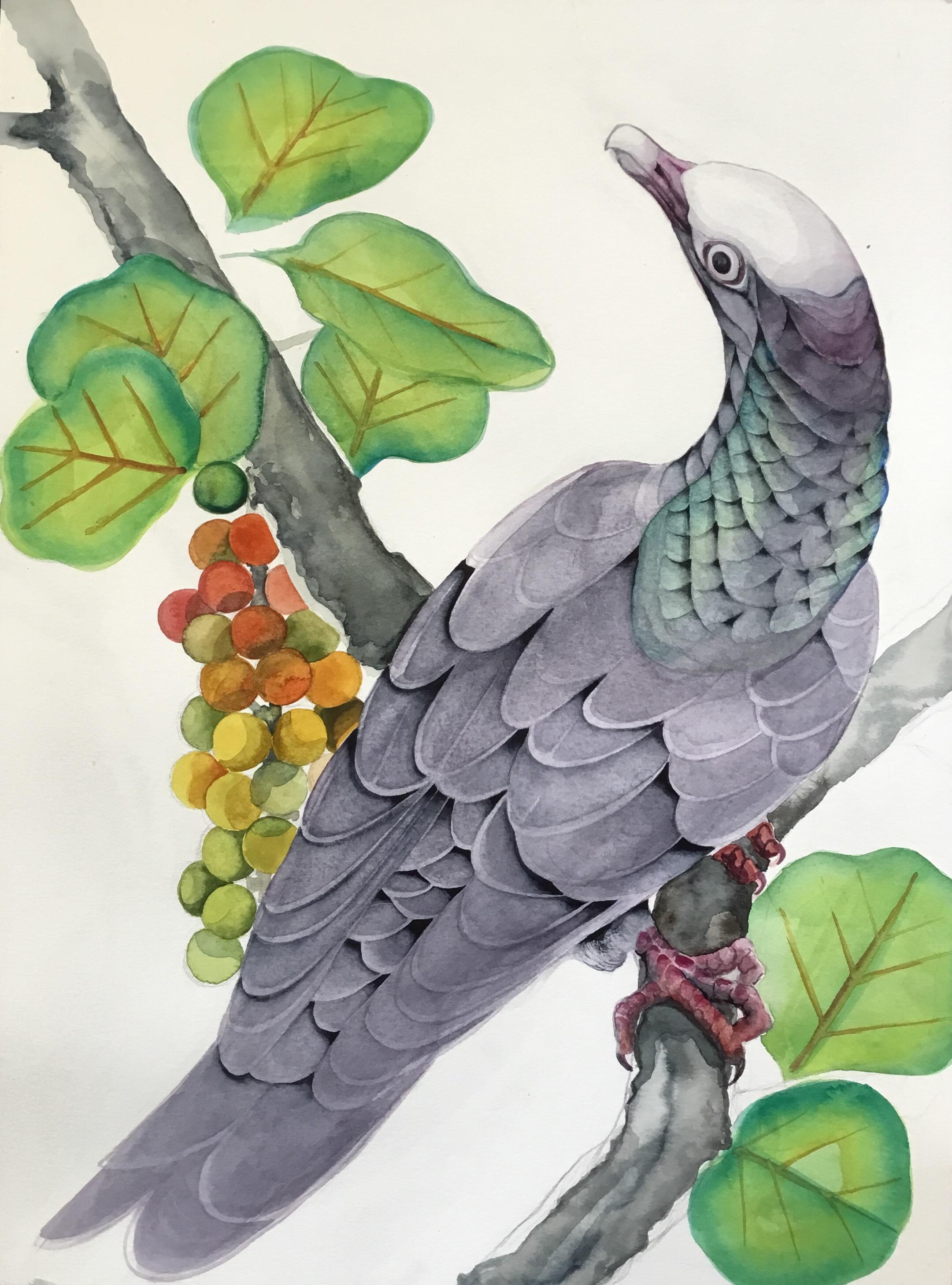 SHCP 200 Haven design 1 watercolor.jpeg