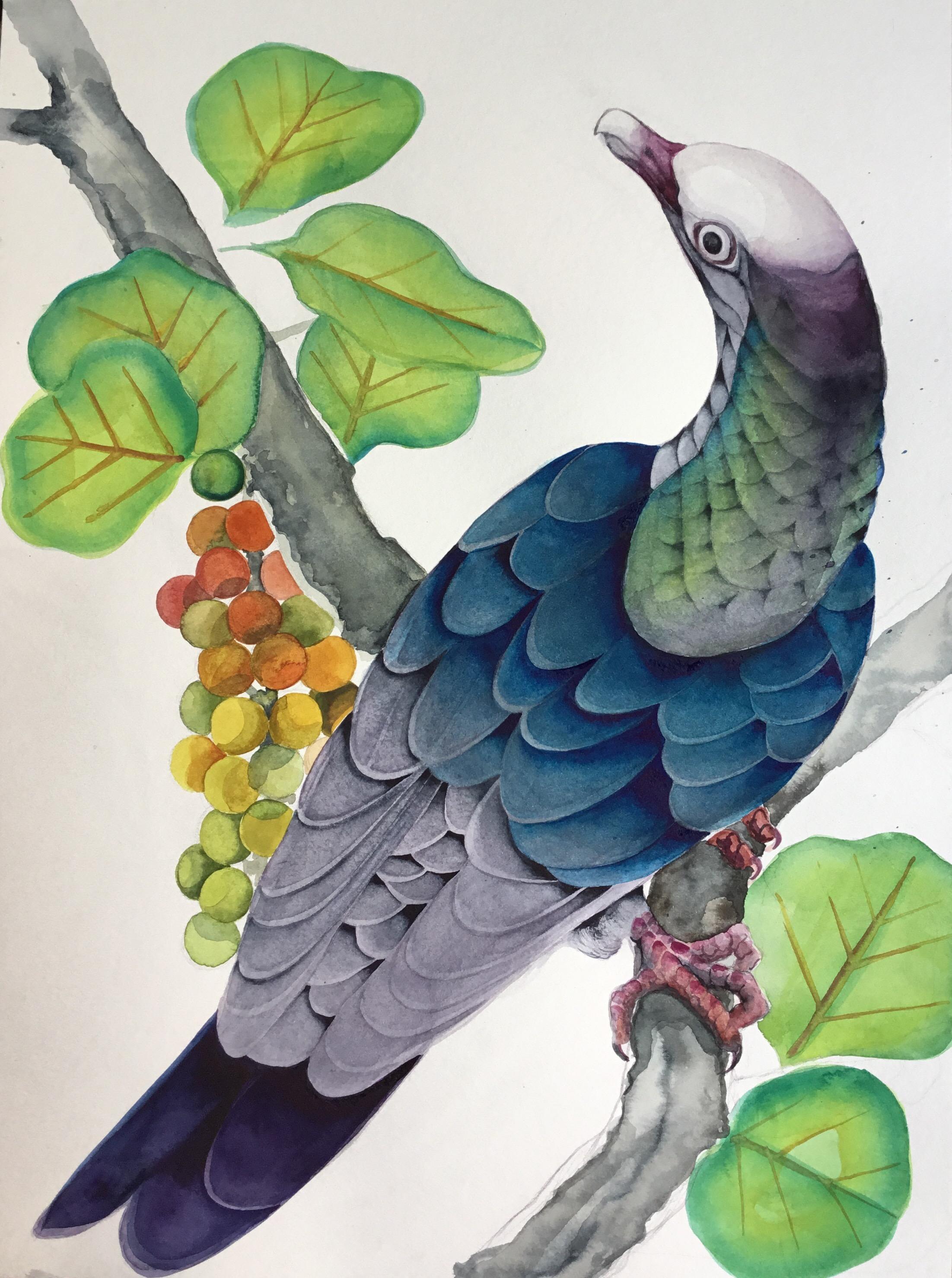 SHCP 200 Haven design 1.2 watercolor.jpeg