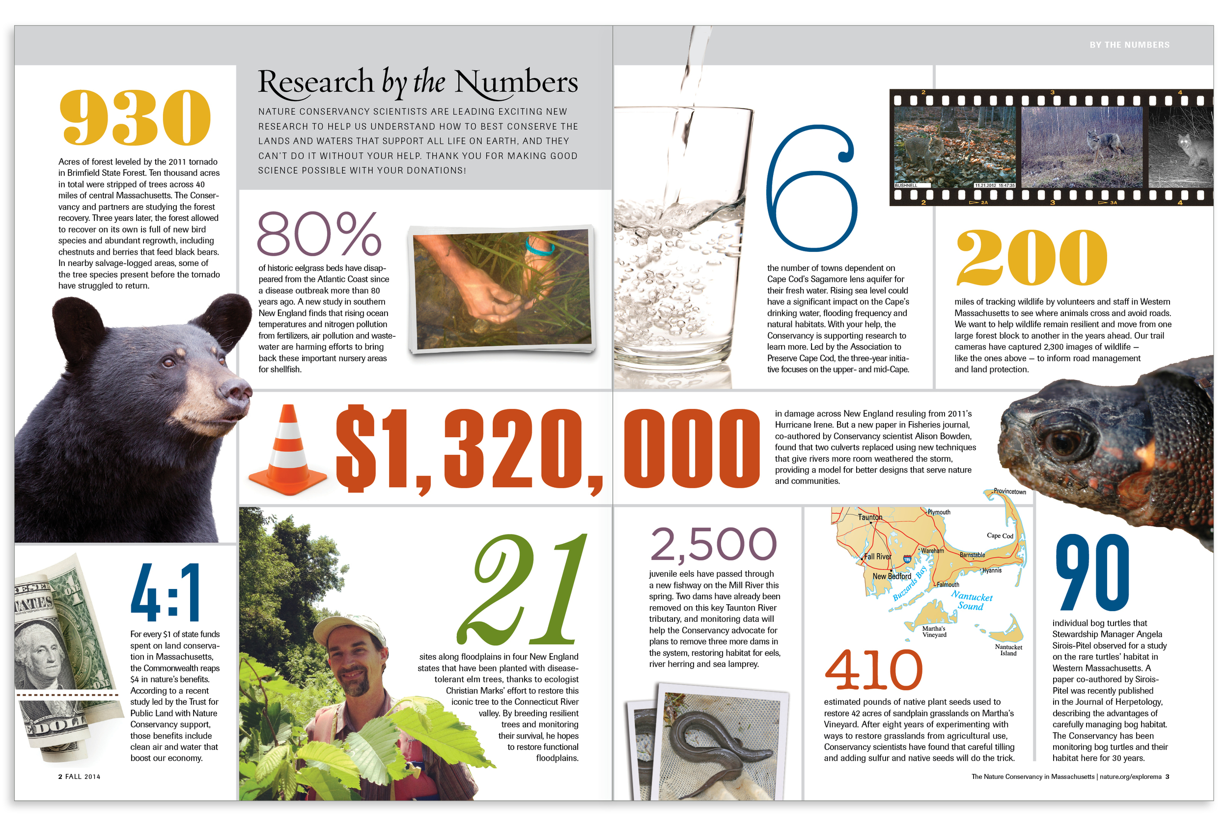 Research by the Numbers