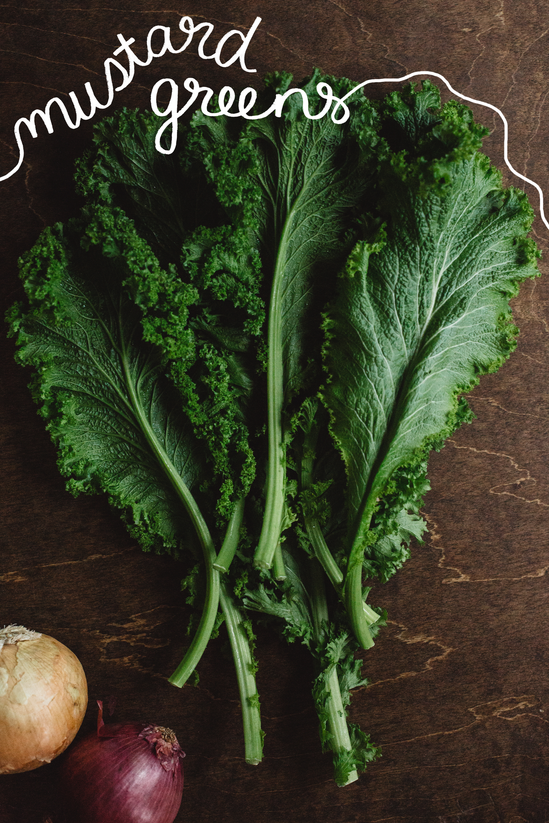 FOODSTUFF_GUIDE-TO-GREENS_MUSTARD-GREENS_KS.jpg