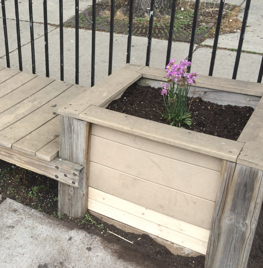 May 16, 2015 Swift Garden Clean-Up