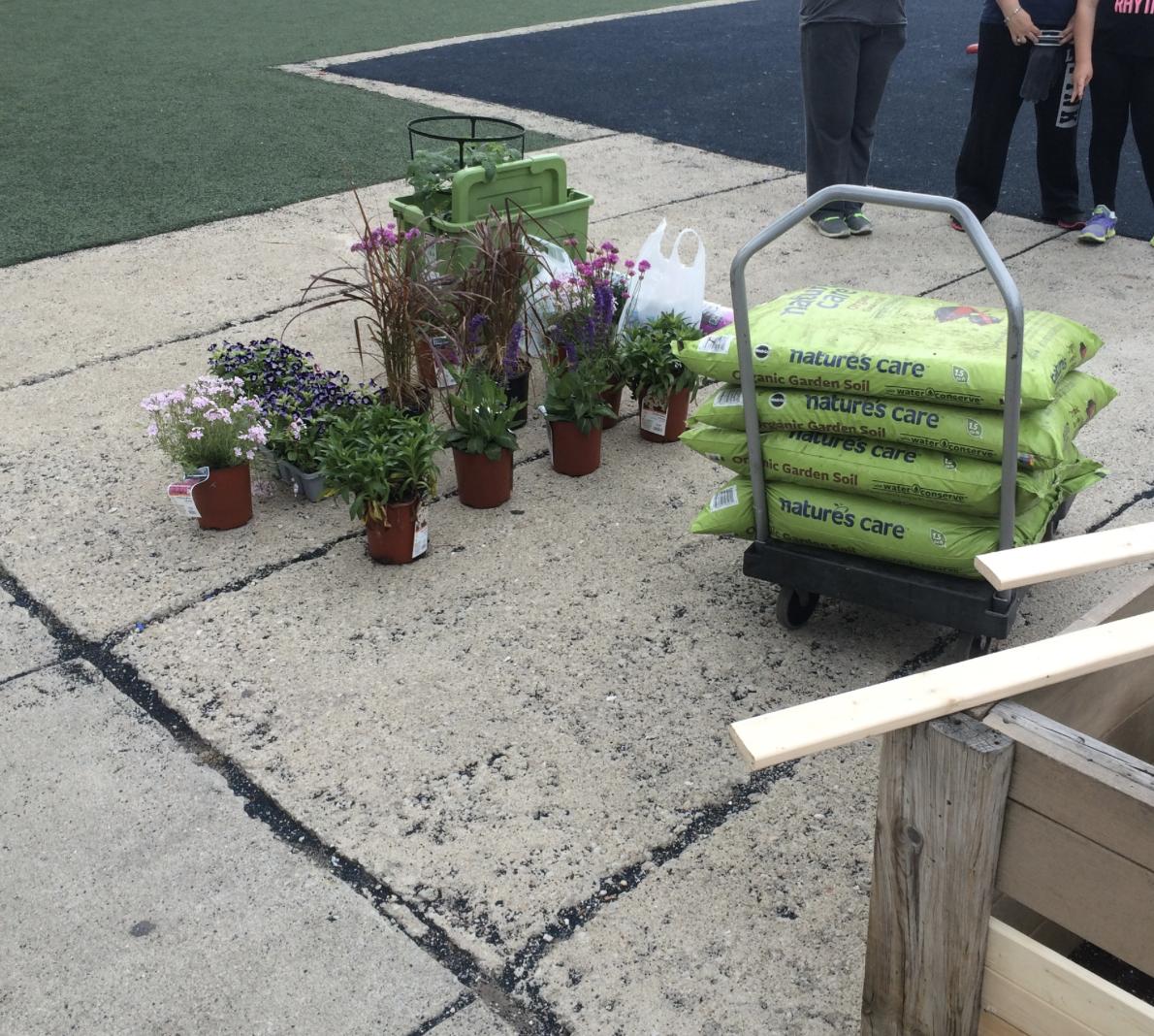 June 18, 2015 Swift Garden Clean-Up