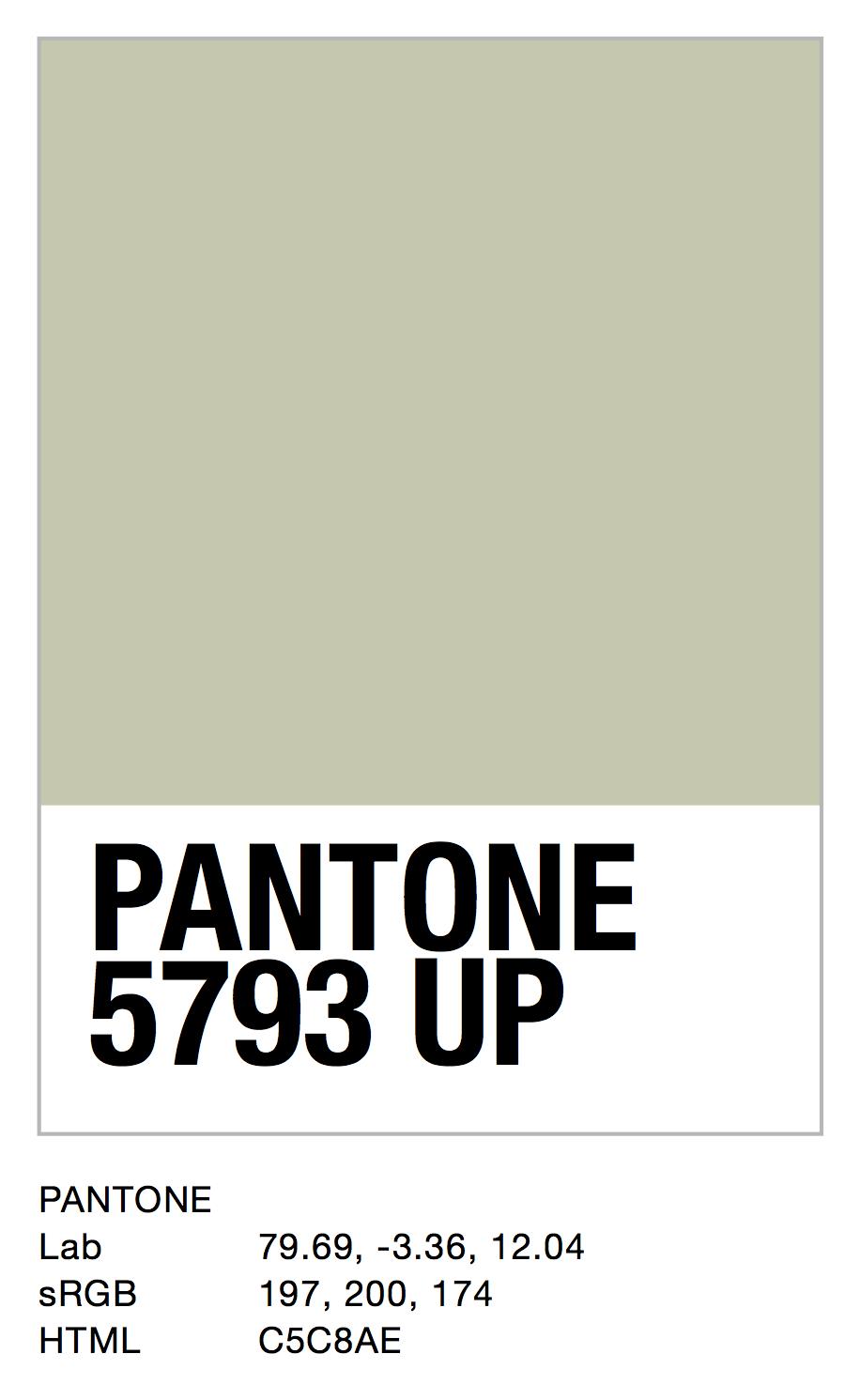 PANTONE 5793 UP.jpg