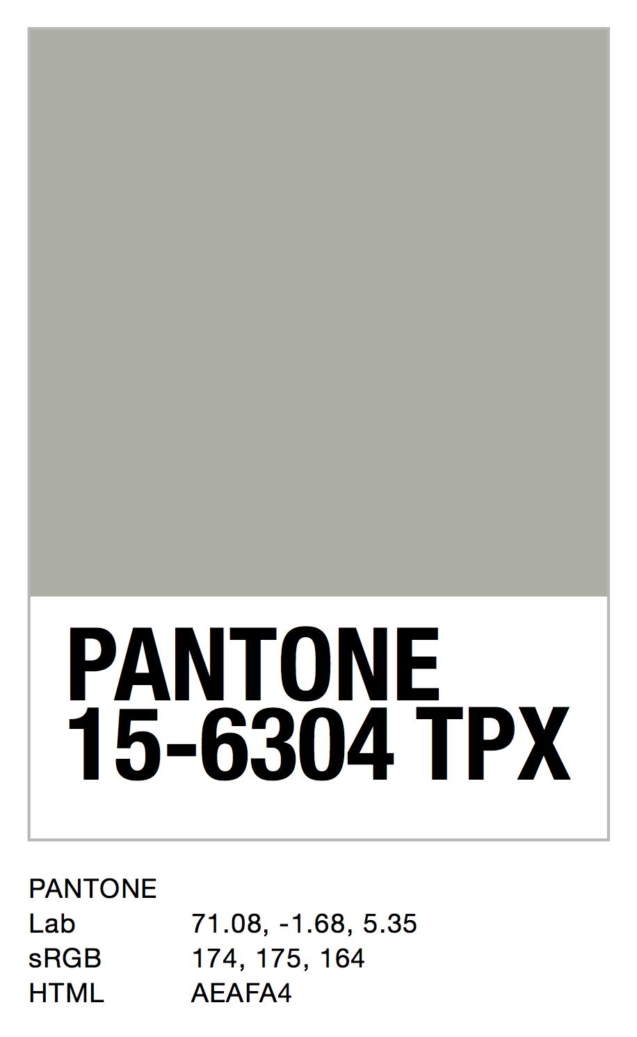 PANTONE 15-6304 TPX.jpg