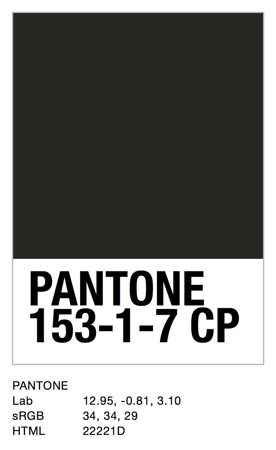 PANTONE 153-1-7 CP.jpg