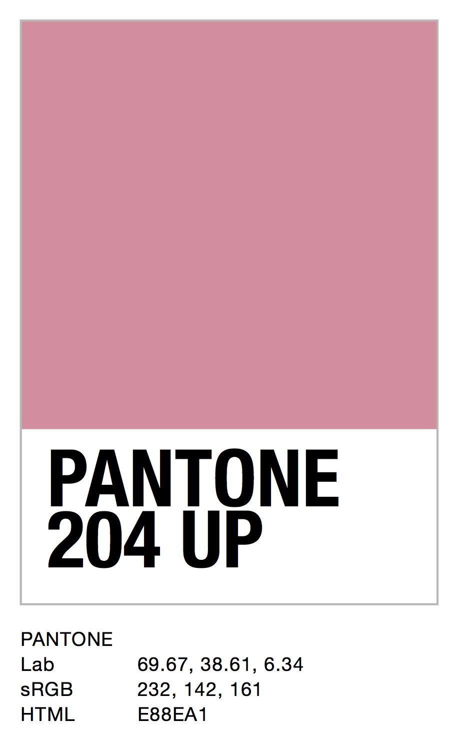 PANTONE 204 UP.jpg