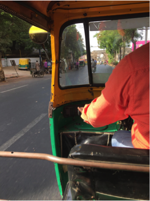 Hold on tight for that rickshaw ride!