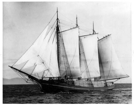 Wawona as lumber schooner.JPG