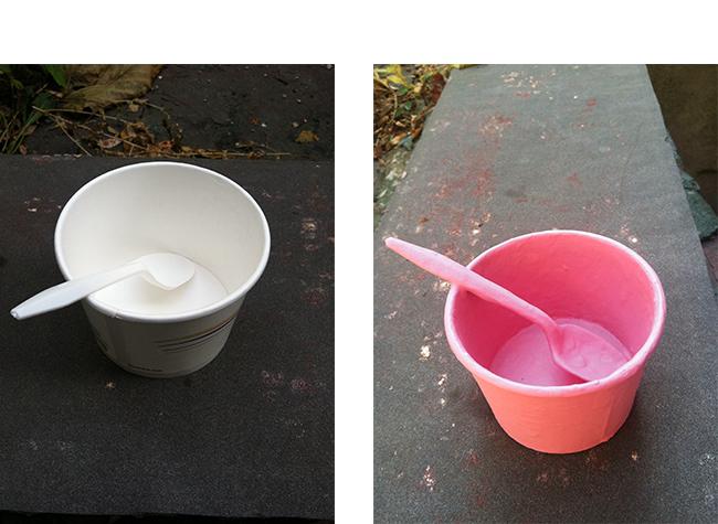 Day 1 (apartment backyard)                               Day 11 (apartment backyard)