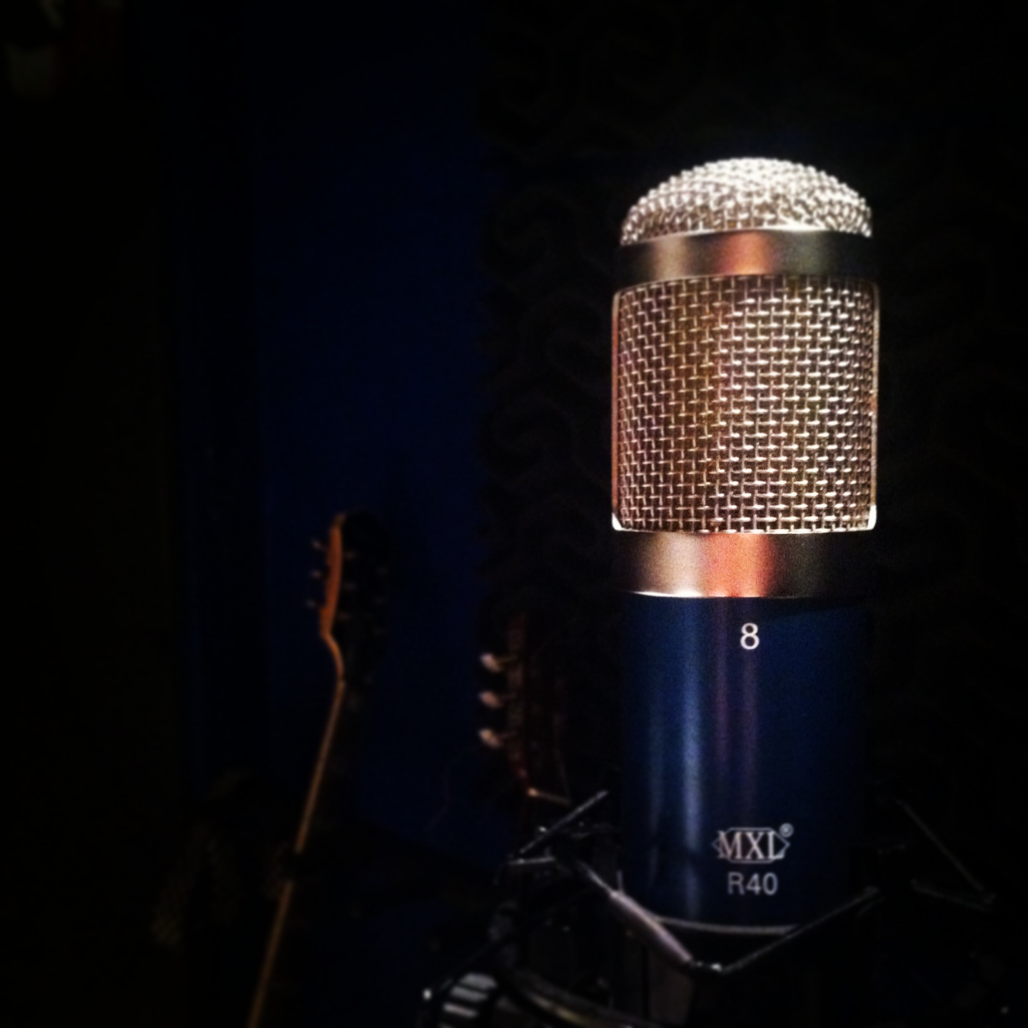 The MXL R40 is a very cool mic, I love it just for its looks.