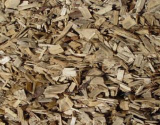 woodchips.jpg