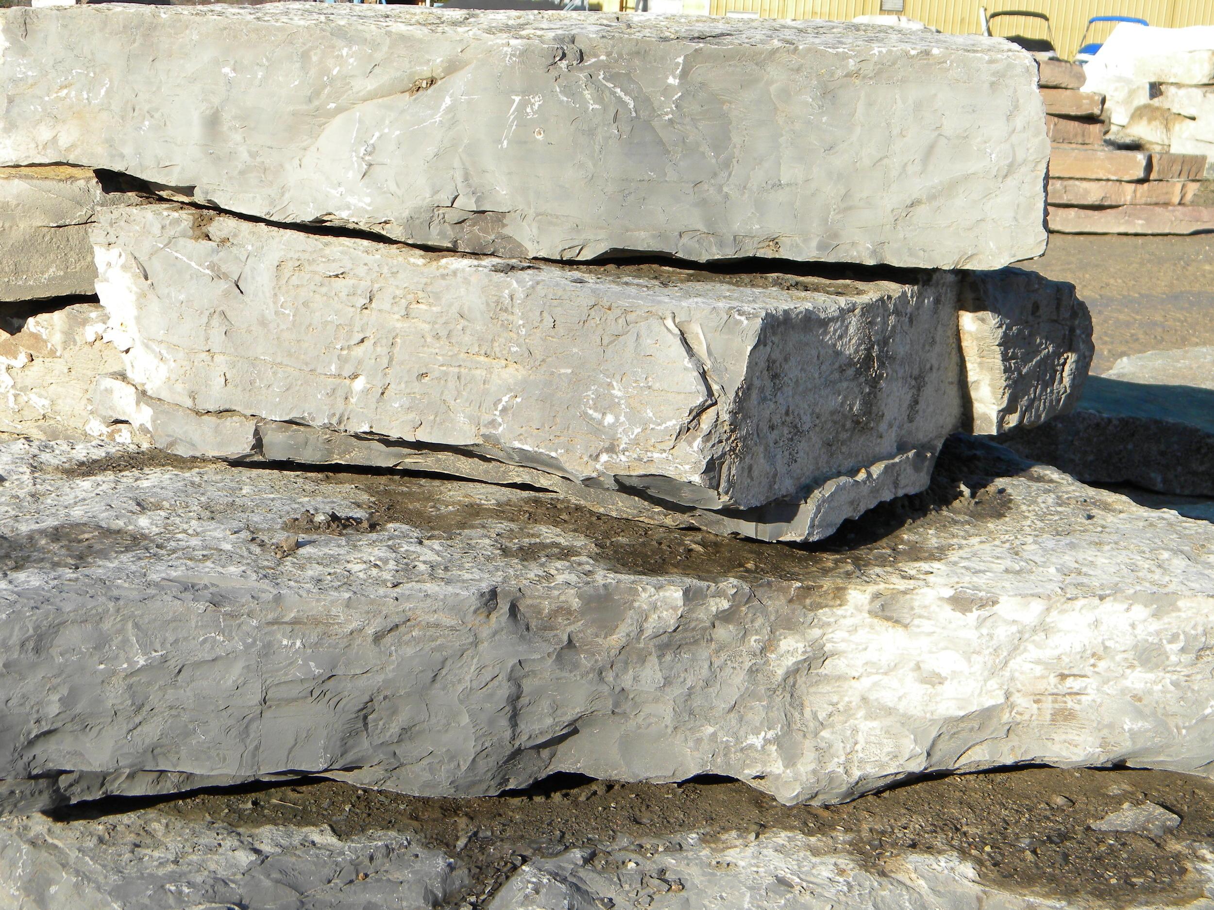 Lake Michigan Limestone