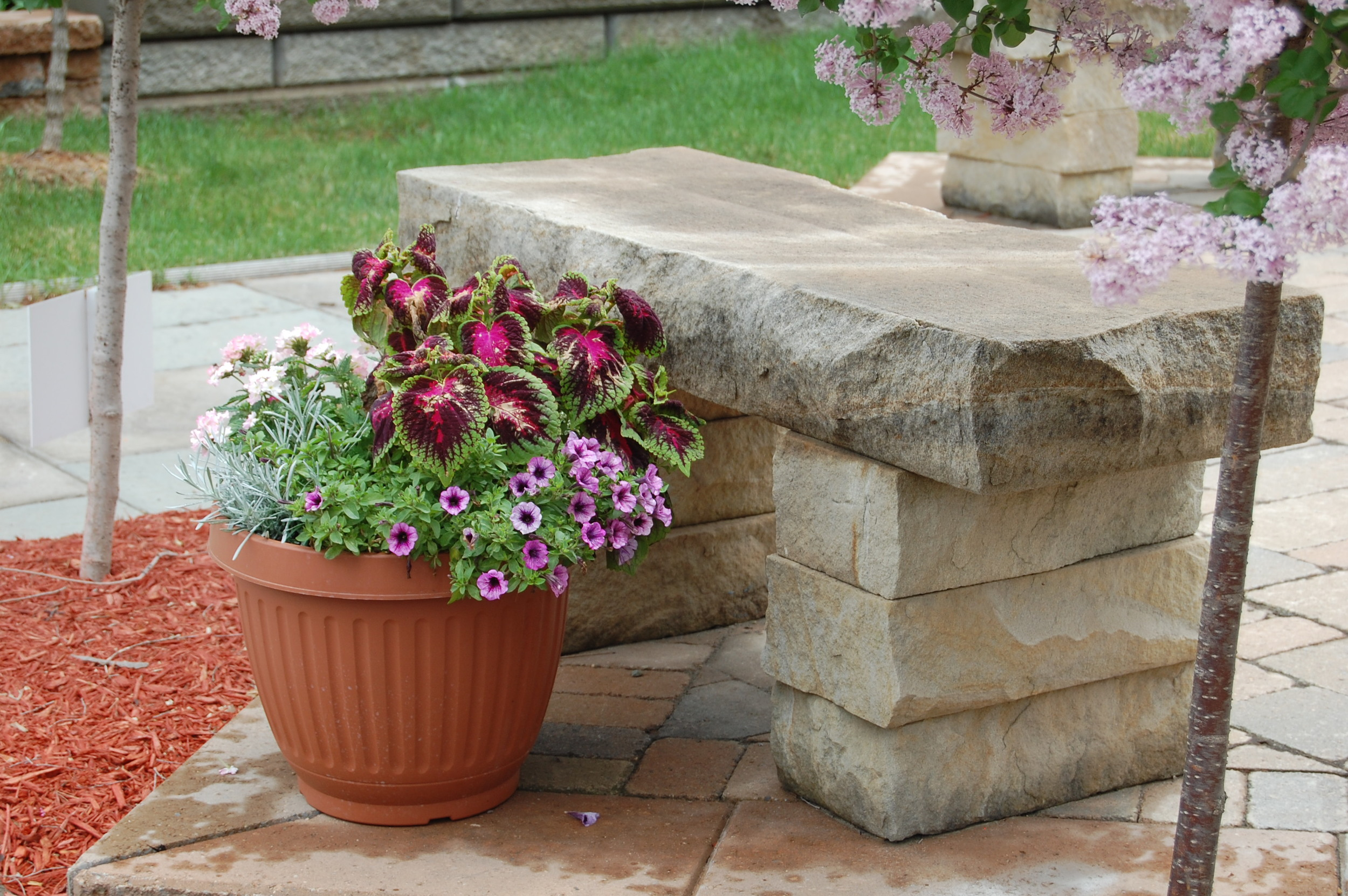 Goldentone Sandstone Bench