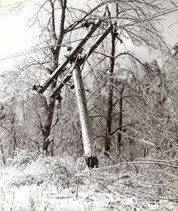 1960 Ice Storm, Dayton, TN From http://daytontn.net/history_60ice.php