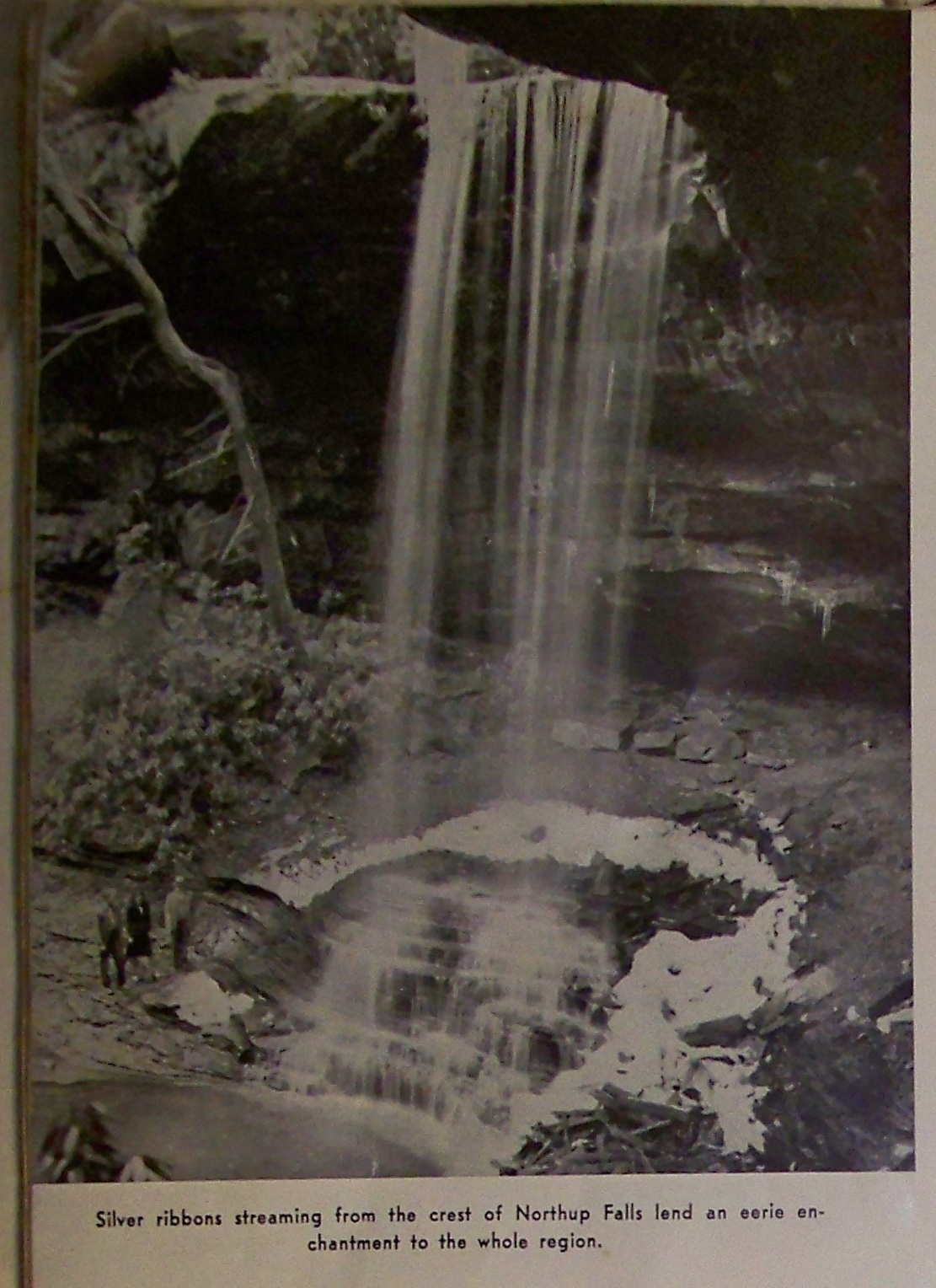Northup Falls; You can still hike to it: Scott at Backwoods Adventures knew just where the trailhead is located.