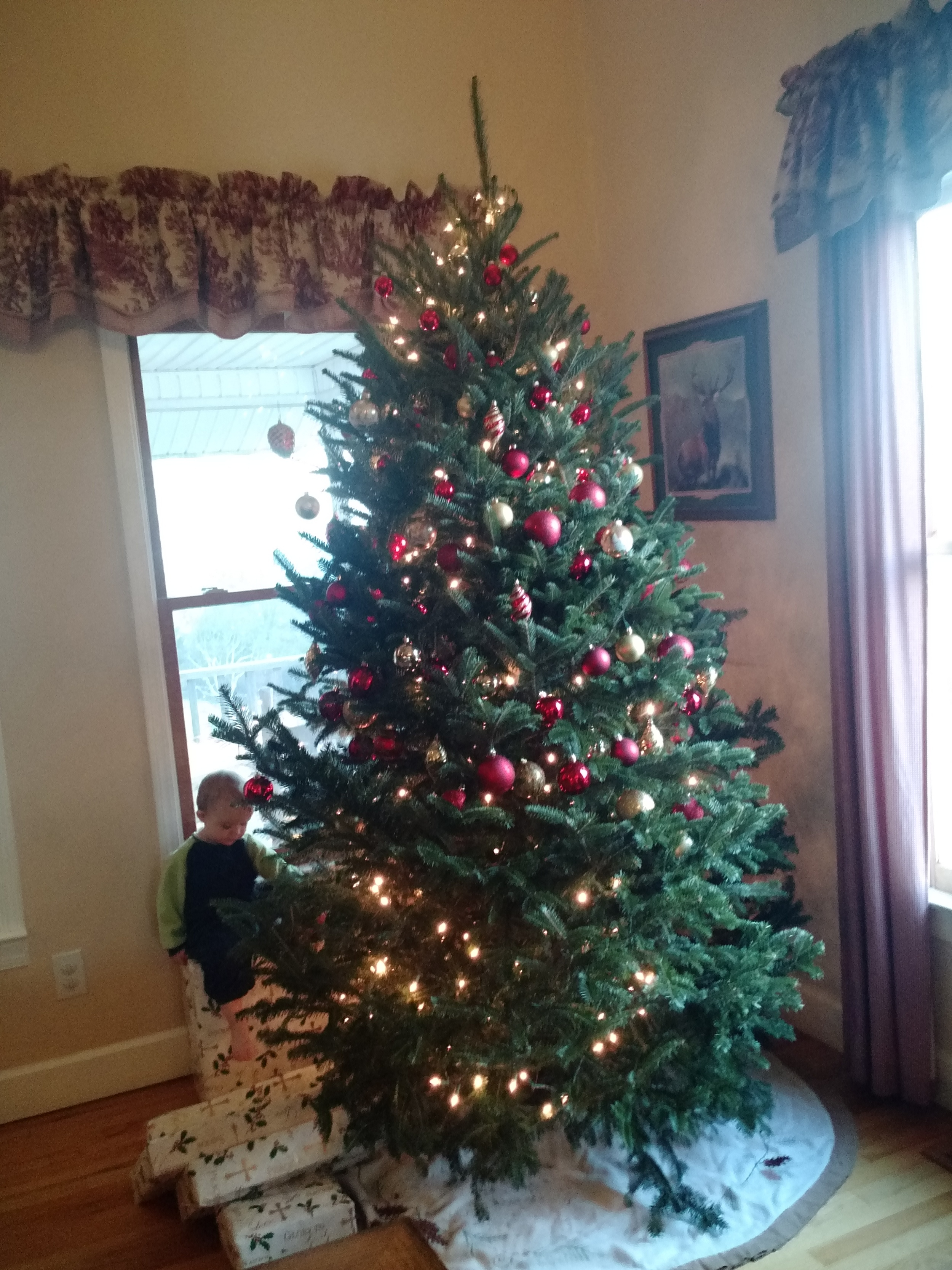 Have you ever seen a Christmas Tree decorated quite like this?
