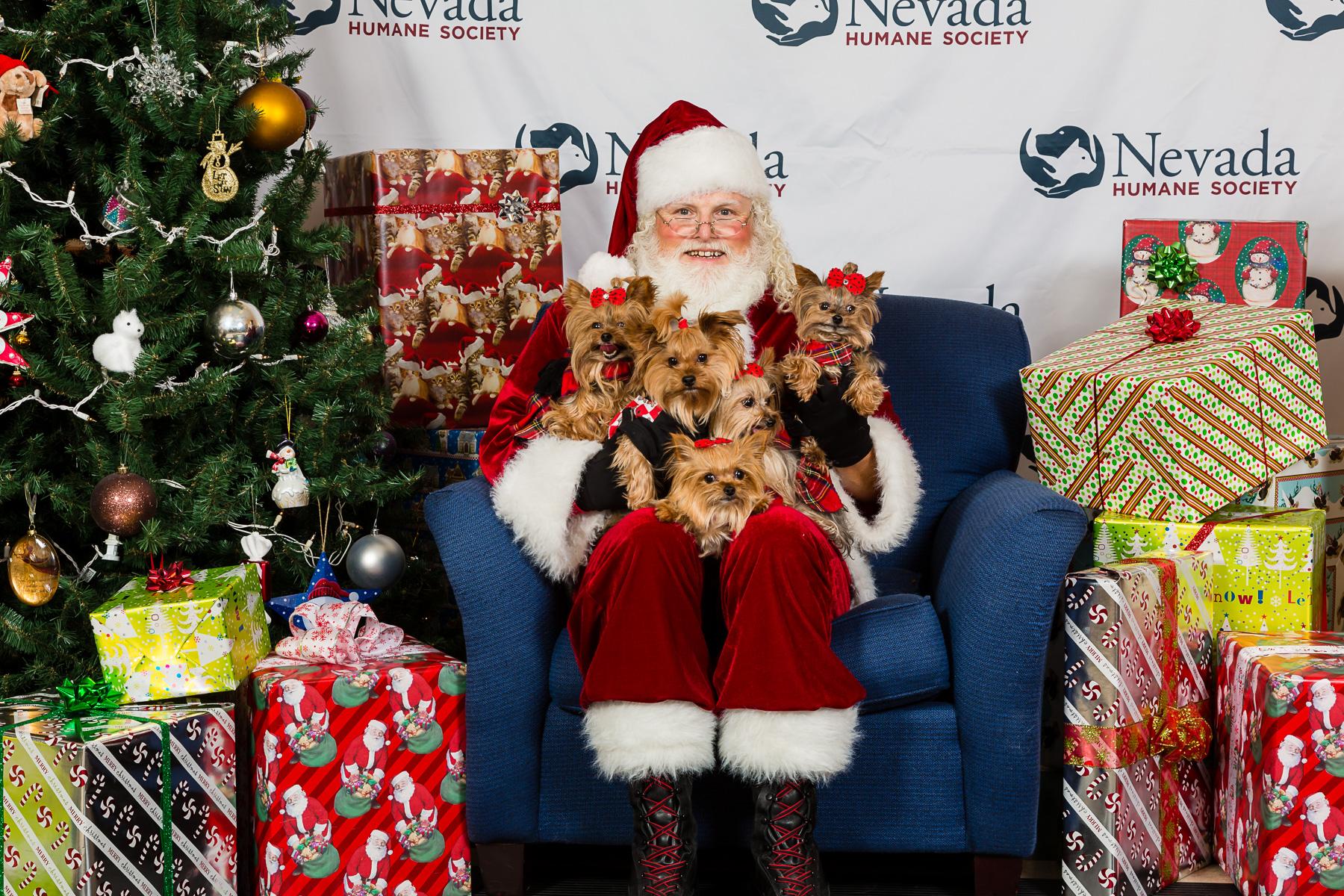 Nevada Humane Society Santa Paws