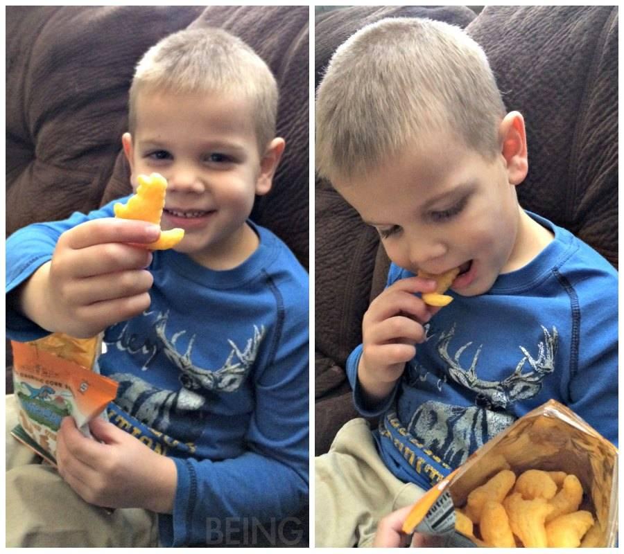 citrus_lane_cheese_snack_collage.jpg