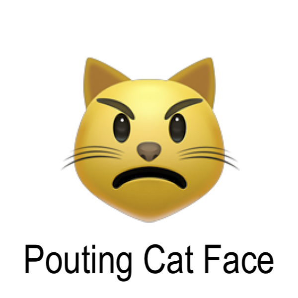 pouting_cat_face.jpg