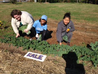 "Alliance's Medical Director Dr. Tara Burnett-Lewis along with two patients harvesting kale in our community garden after November's ""Walk with a Doc""!"