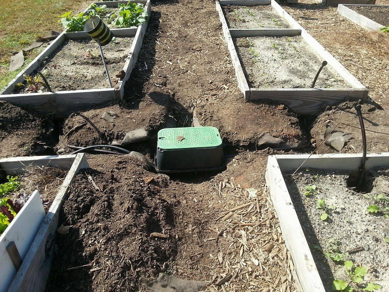 irrigation 4.jpg