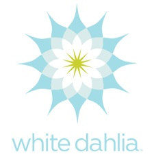 White+Dahlia.jpg