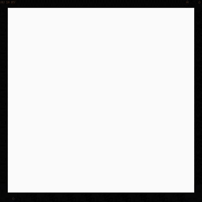 BRIGHT WHITE : BW010