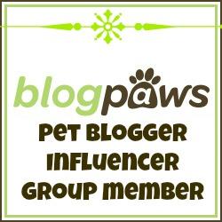 influencer_member.jpg