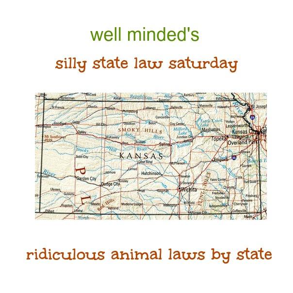 state image source: zonu.com