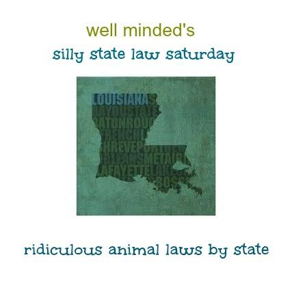 state image source: zazzle.com