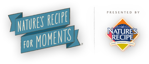 Recipe_For_Moments_Logo_476x206.png