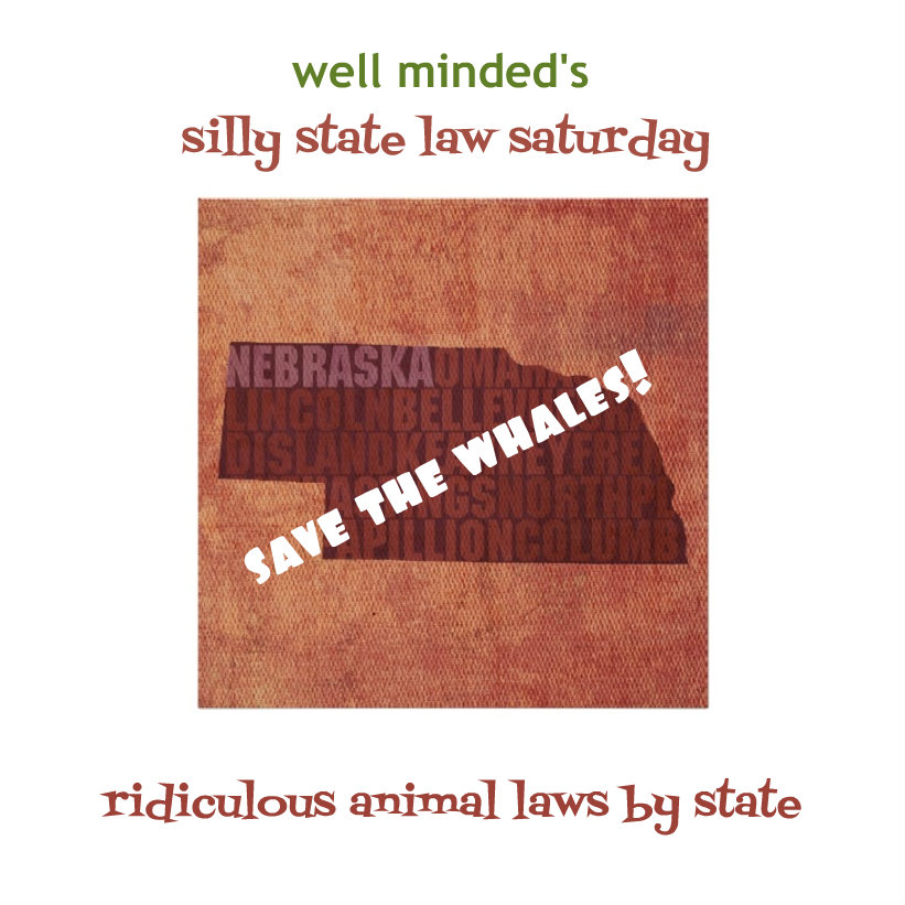 well minded's silly state law saturday: nebraska  state image source: zazzle.com