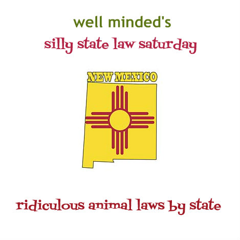 silly state law saturday: new mexico. state image source: 3drose.com